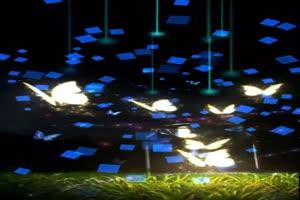 蝴蝶 夜景 巧影背景 竖版绿布和绿幕视频抠像素材