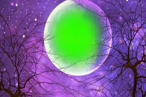 月亮中的绿屏 中秋节专题