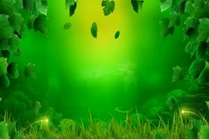 绿色藤蔓唯美梦幻 高清背景素材MP4 在线下载手机特效图片