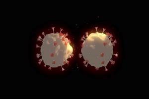 病毒 细菌 新冠病毒 肺炎 肺部14手机特效图片