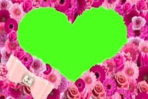 情人节 爱心 520 七夕节 浪漫表白 绿屏抠像素材手机特效图片