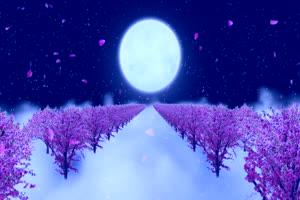 月色桃花树有音效 背景素材 中秋节素材手机特效图片