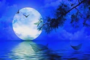 湖上月色 中秋节专题素材绿布和绿幕视频抠像素材