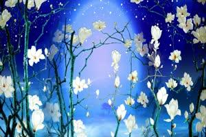 蓝色玉兰花月亮 背景素材 中秋节素材手机特效图片