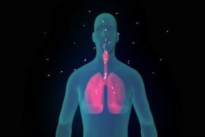 病毒 细菌 新冠病毒 肺炎 肺部4手机特效图片