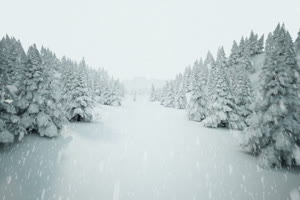 满天飞雪 下雪 冰雪天 特绿布和绿幕视频抠像素材