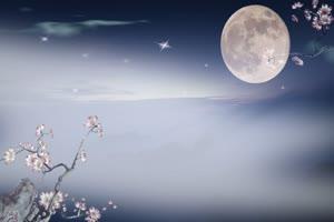圆月梅花 背景素材 中秋节素材手机特效图片
