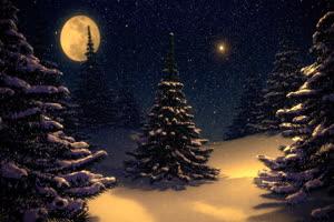 圣诞节 雪花 真实飘雪 圣绿布和绿幕视频抠像素材
