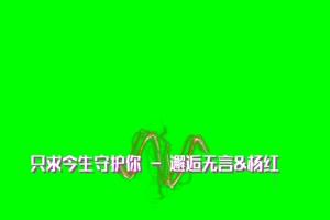 只求今生守护你 歌词定制 傻丫头字幕精灵 绿屏手机特效图片
