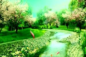 绿树河水 高清背景素材MP4 在线下载手机特效图片