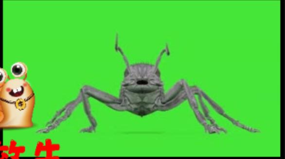大蚂蚁 动物绿幕视频素材下载 @特效牛绿幕素材手机特效图片