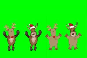 驯鹿Quartet of Dancing Reindeers in green screen