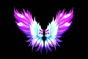 彩色的翅膀 天使的翅膀 黑幕背景 抠像素材 特效手机特效图片