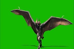 蝙蝠攻击飞 绿幕素材 抠像视频 高速下载手机特效图片