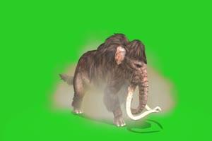 猛犸象 绿屏动物 特效视频 抠像视频 巧影ae素材手机特效图片