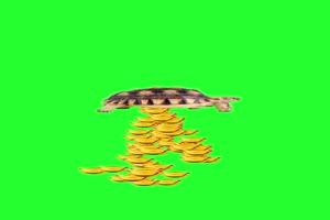 乌龟 元宝 招财进宝 竖版绿屏素材手机特效图片