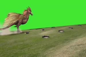 火鸡恐龙 绿屏动物 特效视