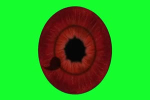 写轮眼 2 火影忍者 特效绿屏 抠像素材手机特效图片