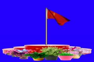国旗 国庆节 升旗仪式 巧影抠像 AE抠像 绿幕素材手机特效图片