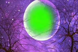 中秋节月亮 绿幕抠像视频免费下载 5