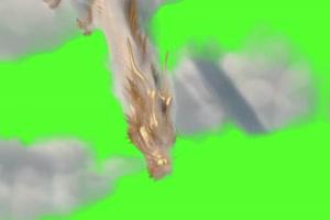 金龙 云雾中的金龙 龙 飞天动物 绿幕抠像 特效视手机特效图片