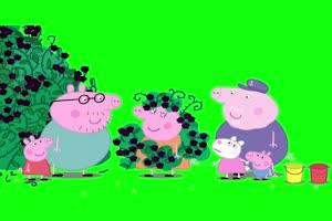 小猪佩奇猪妈妈变成黑莓树抠像素材 绿屏素材手机特效图片