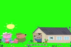 小猪佩奇砸到沙袋鼠先生家的玻璃抠像素材 绿屏手机特效图片