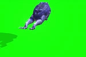 蓝色蟾蜍后面癞蛤蟆 绿幕背景视频 抠像特效视频手机特效图片