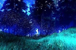 唯美森林 梦幻森林 仙境 背景视频下载31手机特效图片