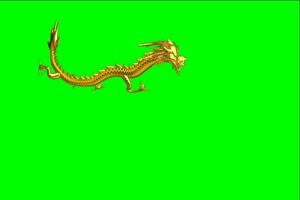 龙05 飞龙 中国龙 绿屏抠像绿布和绿幕视频抠像素材