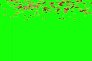枫叶飘落手机特效图片