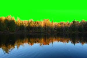 河流 自然绿屏抠像素材绿布和绿幕视频抠像素材