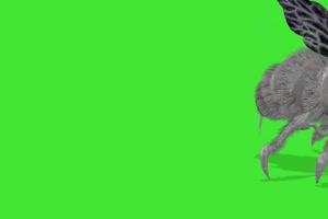 蜜蜂 黄蜂 绿屏动物 特效视频 抠像视频 巧影ae素手机特效图片