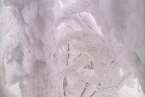圣诞节 雪花 冰天雪地 特绿布和绿幕视频抠像素材