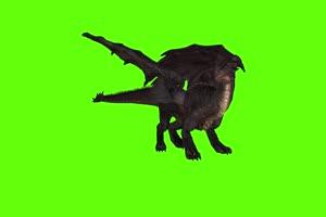 黑色翼龙侧前面 绿幕视频 绿幕素材 剪映抠像素手机特效图片
