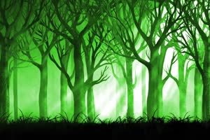 唯美森林 梦幻森林 仙境 背景视频下载42手机特效图片