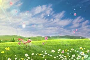 4K唯美草原蓝天白云野花有音乐特效背景视频素材手机特效图片