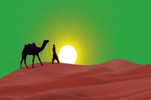 免费骆驼2 绿幕视频 抠像视频下载手机特效图片