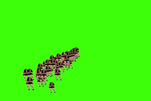 天降美女 绿屏版 专为帝国vip设计手机特效图片