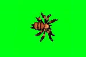 绿幕抠像巨型蜘蛛绿屏素
