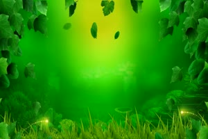唯美森林 梦幻森林 仙境 背景视频下载32手机特效图片