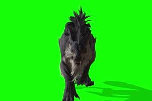 怪兽狼 绿幕视频 绿幕素材 剪映抠像素材手机特效图片