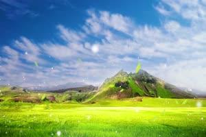 免费4K唯美清新草原有音乐特效背景视频素材手机特效图片