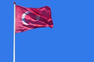土耳其 国旗绿幕后期抠像视频特效素材@特效牛免手机特效图片