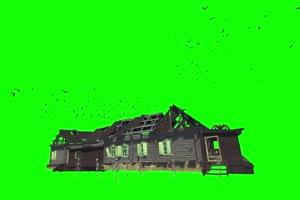 蝙蝠聚集在骷髅房上面 绿幕素材 抠像视频免费下手机特效图片