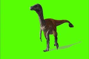 行走的恐龙绿幕视频素材 怪兽绿幕剪映抠像@特效手机特效图片