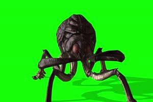 4K 蜘蛛怪 绿幕素材 绿幕视频 动物绿幕下载1手机特效图片