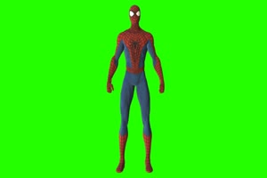 蜘蛛侠 14 漫威英雄 复仇者联盟 绿屏抠像 特效素手机特效图片