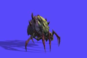 4K蜘蛛绿幕素材侧面 绿幕抠像素材手机特效图片