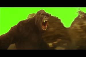 金刚大猩猩绿幕 骷髅岛绿幕视频素材 怪兽绿幕剪手机特效图片